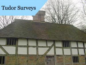 A Tudor style home